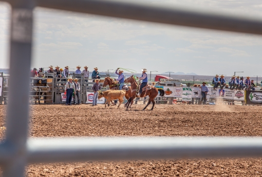 nmsurodeo_11