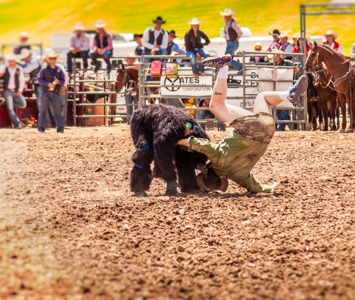 nmsurodeo_14