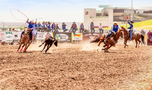 nmsurodeo_15