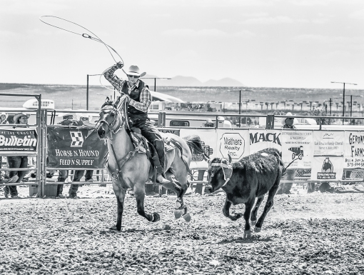 nmsurodeo_19