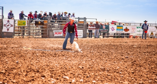 nmsurodeo_3