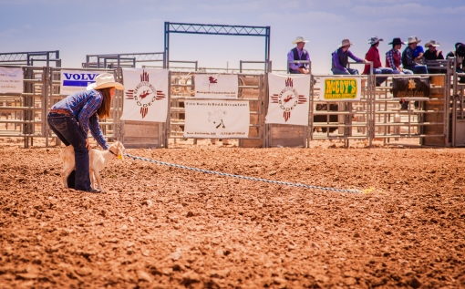 nmsurodeo_4