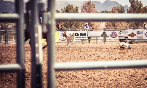 nmsurodeo_8